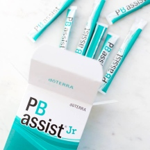 dt_pb-assist-jr